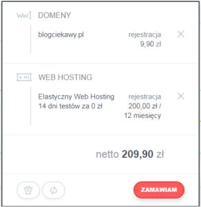 hosting i domena