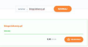 wolna domena